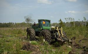 Külvi on võimalik ühildada maapinna ettevalmistamisega. Foto:RMK