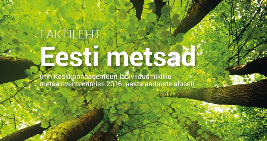 Eramets-eesti-metsandus-metsafaktid