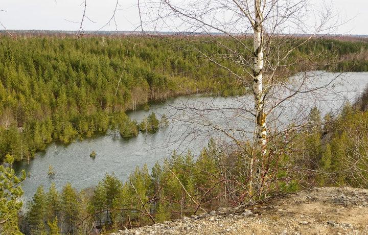 keskkonnaamet, karjäär, metsastamine