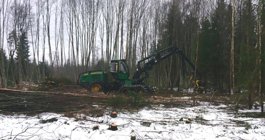 eramets, harvester, metsa majandamine
