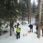 Eramets-uhinenud-metsaomanikud-surju-3