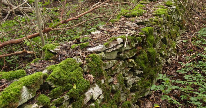 Pärandkultuur, kiviaed