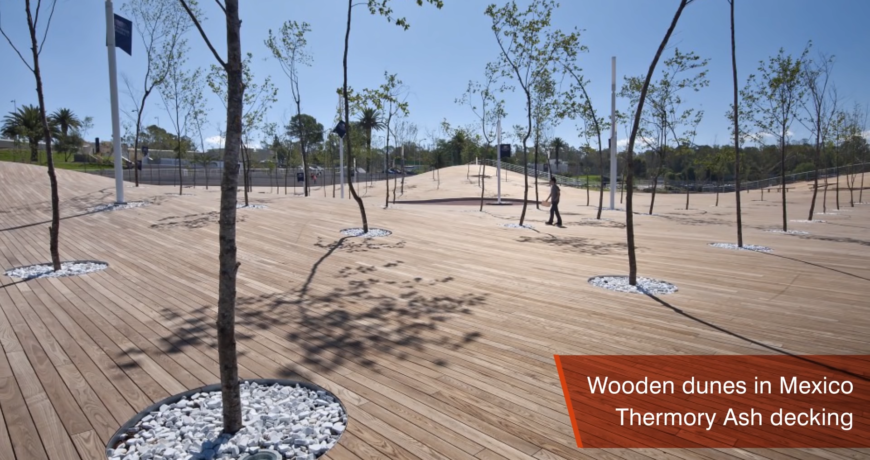 puit, puidutööstus