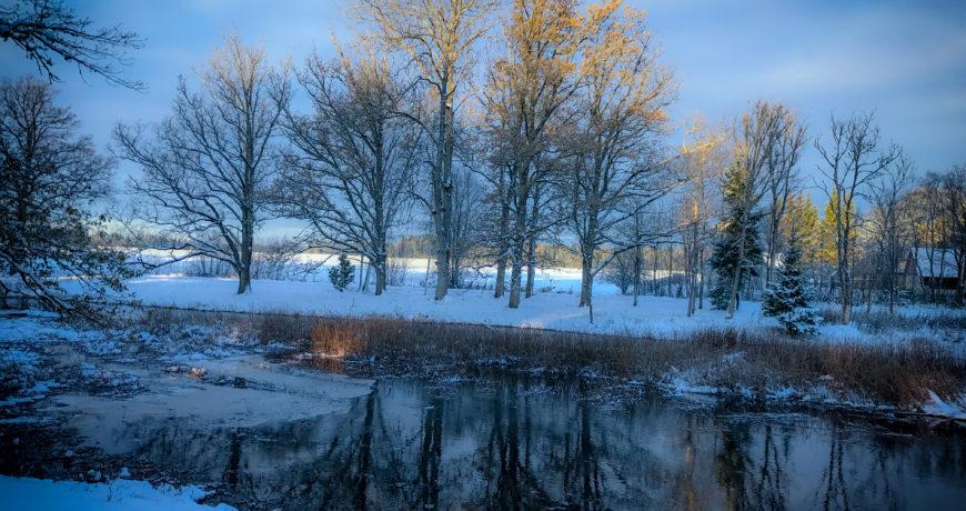 maa, jõgi, vesi, talv, eramets