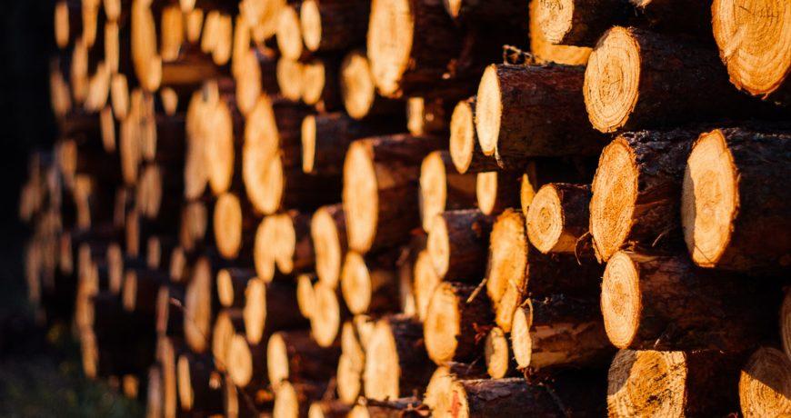 küttepuu, puit, puiduvirn, eramets, puidu hind